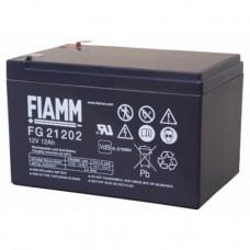 Fiamm FG21202 portare 12V 12Ah batteria acida